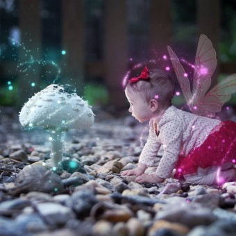 Fairy wings and glitter | Southern Maryland Fairy Godmother